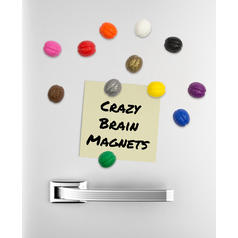Neodymium Brain Magnets 12 piece set